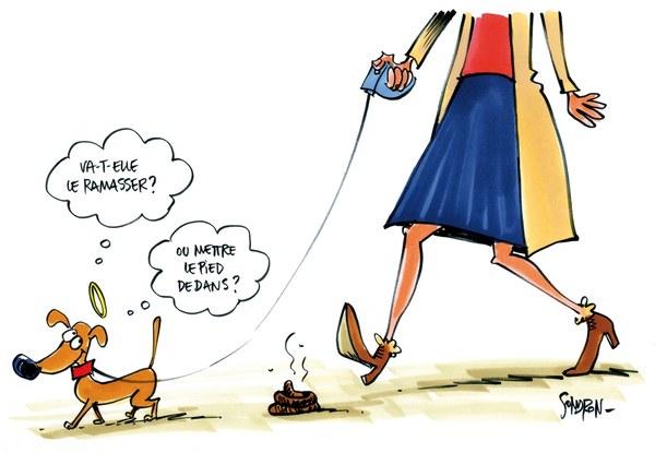Dessin Sondron - Etrons de chiens